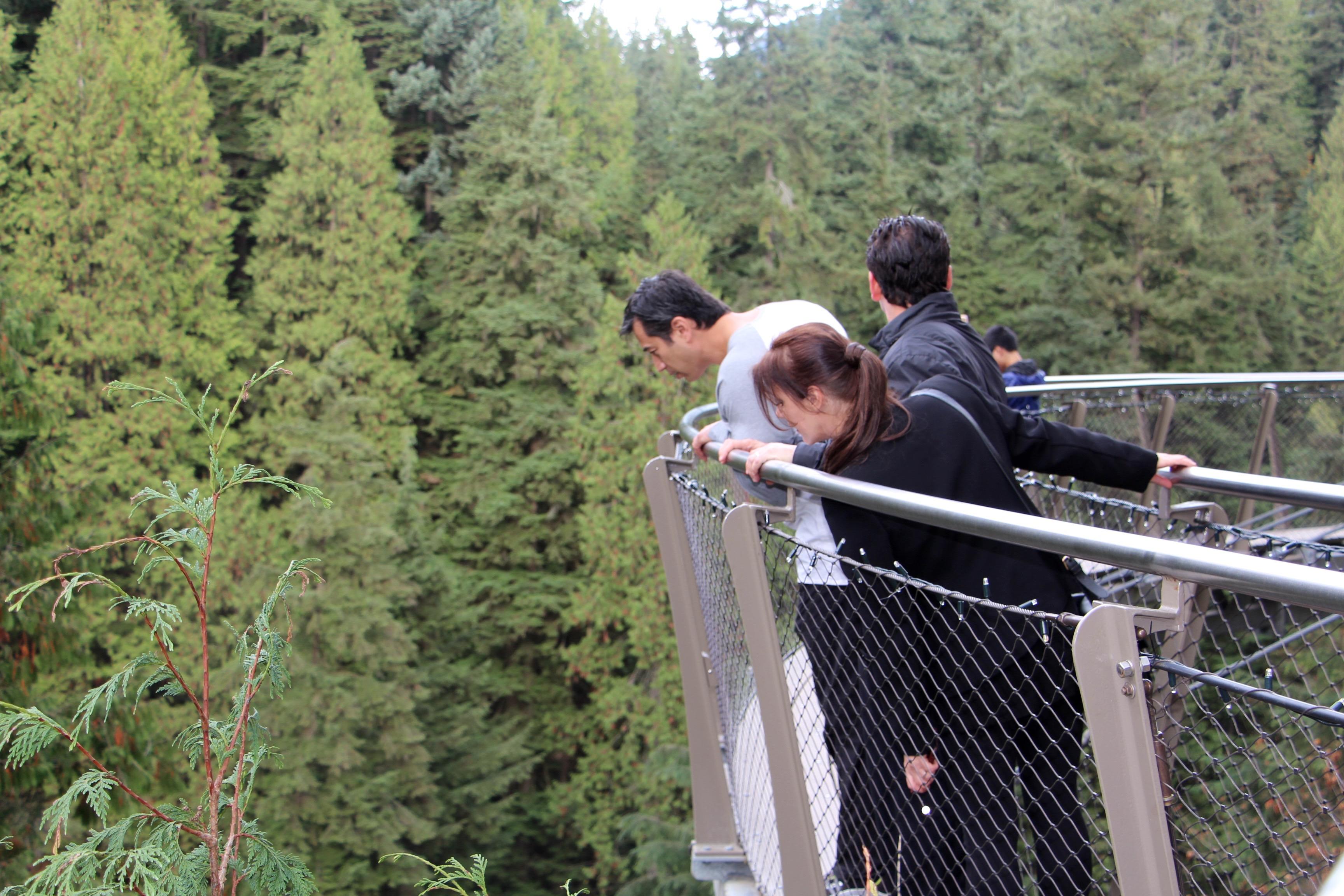 Vancouver Day Tour Amp Capilano Suspension Bridge Private Tour  VanCity Tours